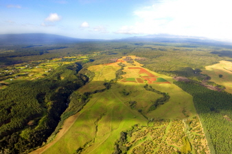 Hundreds of acres of agricultural land right outside Hilo