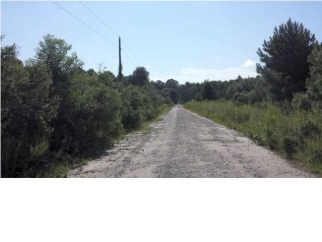 Lot 6 Chisolm Road, Johns Island, SC, 29445 United States