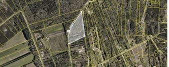 B=-1 Maybank Highway, Wadmalaw, SC, 29487 United States