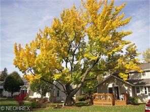 25589 West Hedgewood Drive, Westlake, OH, United States