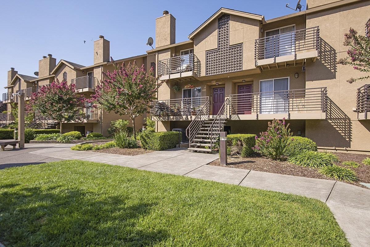 1126 Pear Tree Ln, Napa, CA, 94558 United States